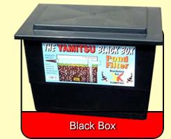 Yamitsu mega black box filters kockney koi for Large pond filter box