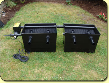 Mega media black box large twin kockney koi for Koi pond filter box