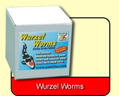 Wurzel Worms
