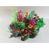 Aquarium Plants - Luxury Group Range